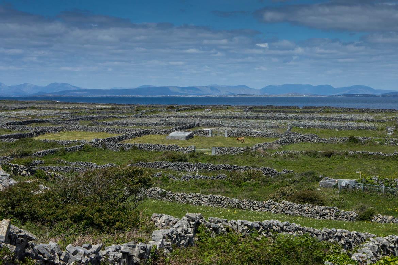 Parcelles de terre sur Inishmore avec les montagnes du Connemara au loin