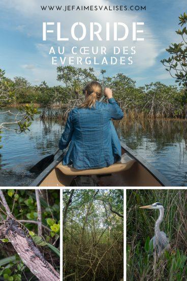 La Floride est beaucoup plus nature qu'on le croit et l'Everglades en sont la preuve.