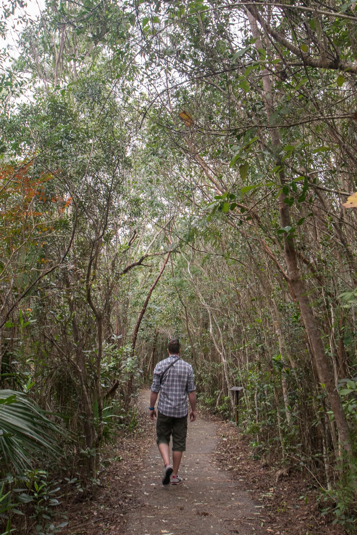 Au cœur des Everglades, Floride