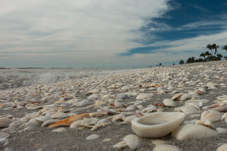 Plage de Sanibel, Floride