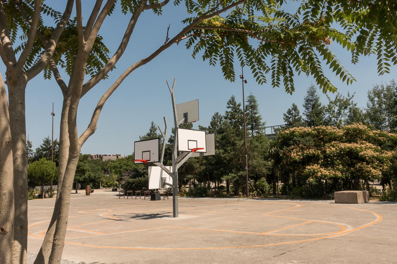 L'arbre à basket, une oeuvre pérenne du voyage à Nantes
