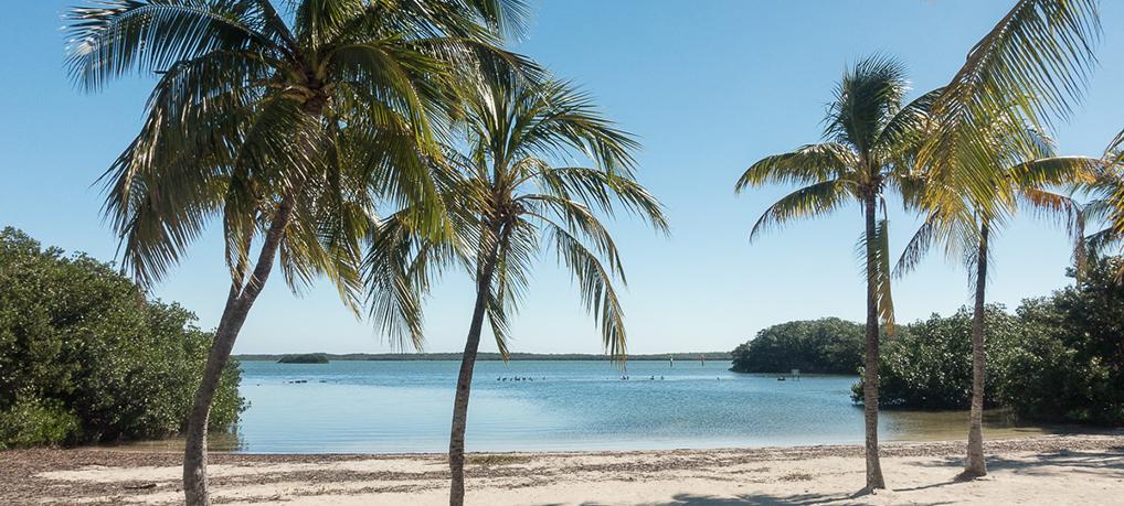 Roadtrip en Floride : itinéraire et préparation
