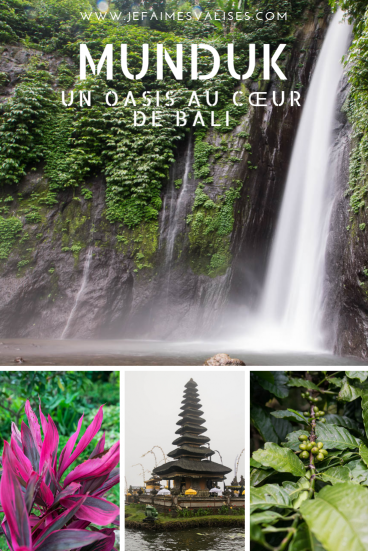 2 jours au coeur de Bali à Munduk