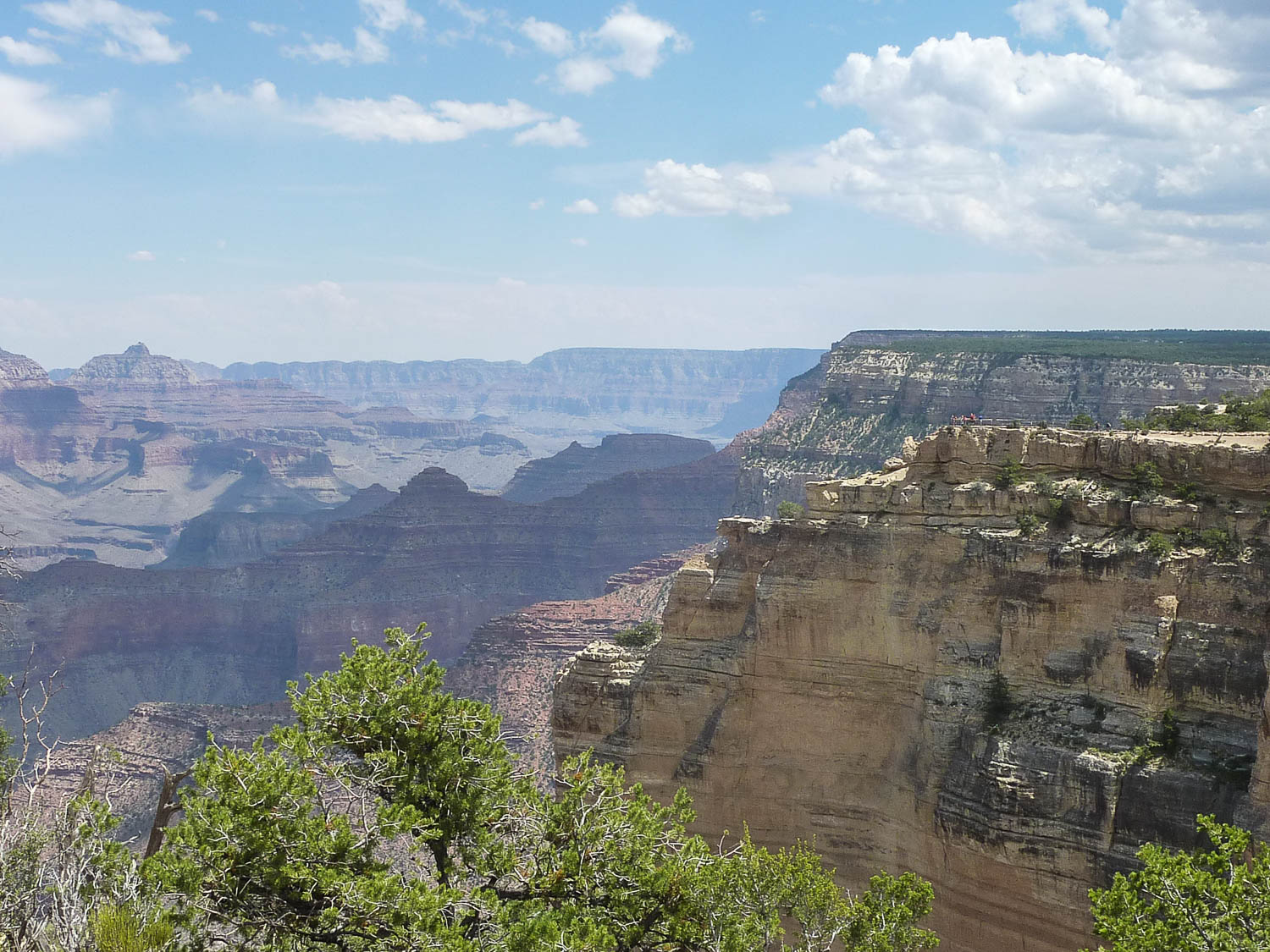 Balade dans le Grand Canyon