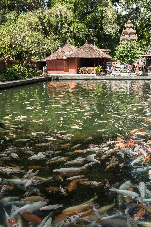 Tirta Empul, Bali