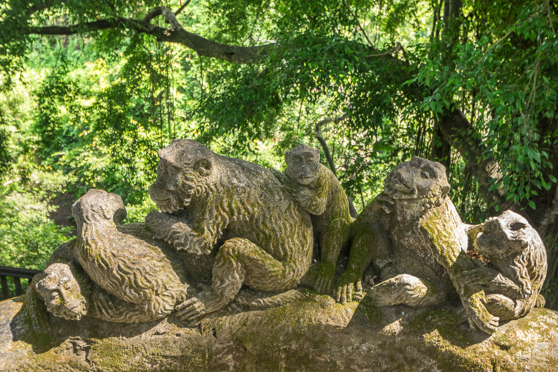 Monkey Forest, Uud, Bali