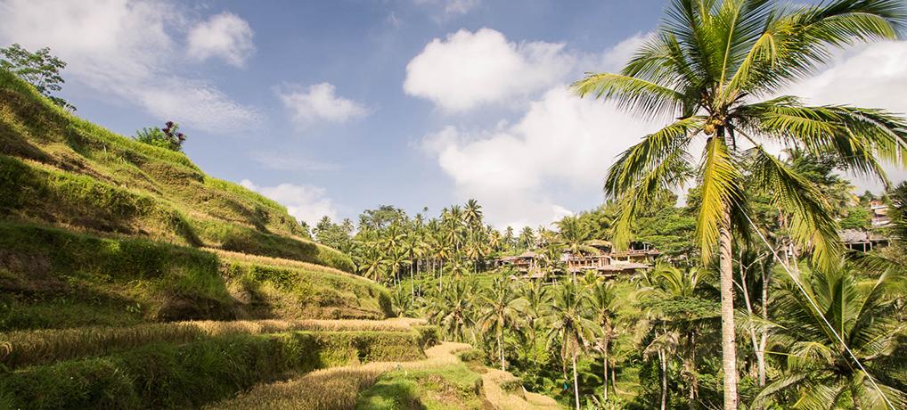 Infographie - 2 semaines à Bali : Itinéraire, formalités, budget