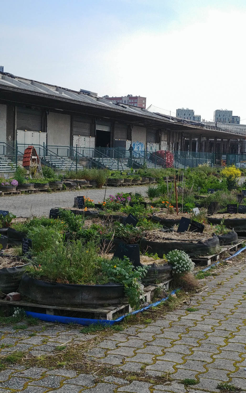 Ferme urbaine, Gare Saint-Sauveur, Eldorado, Lille 3000